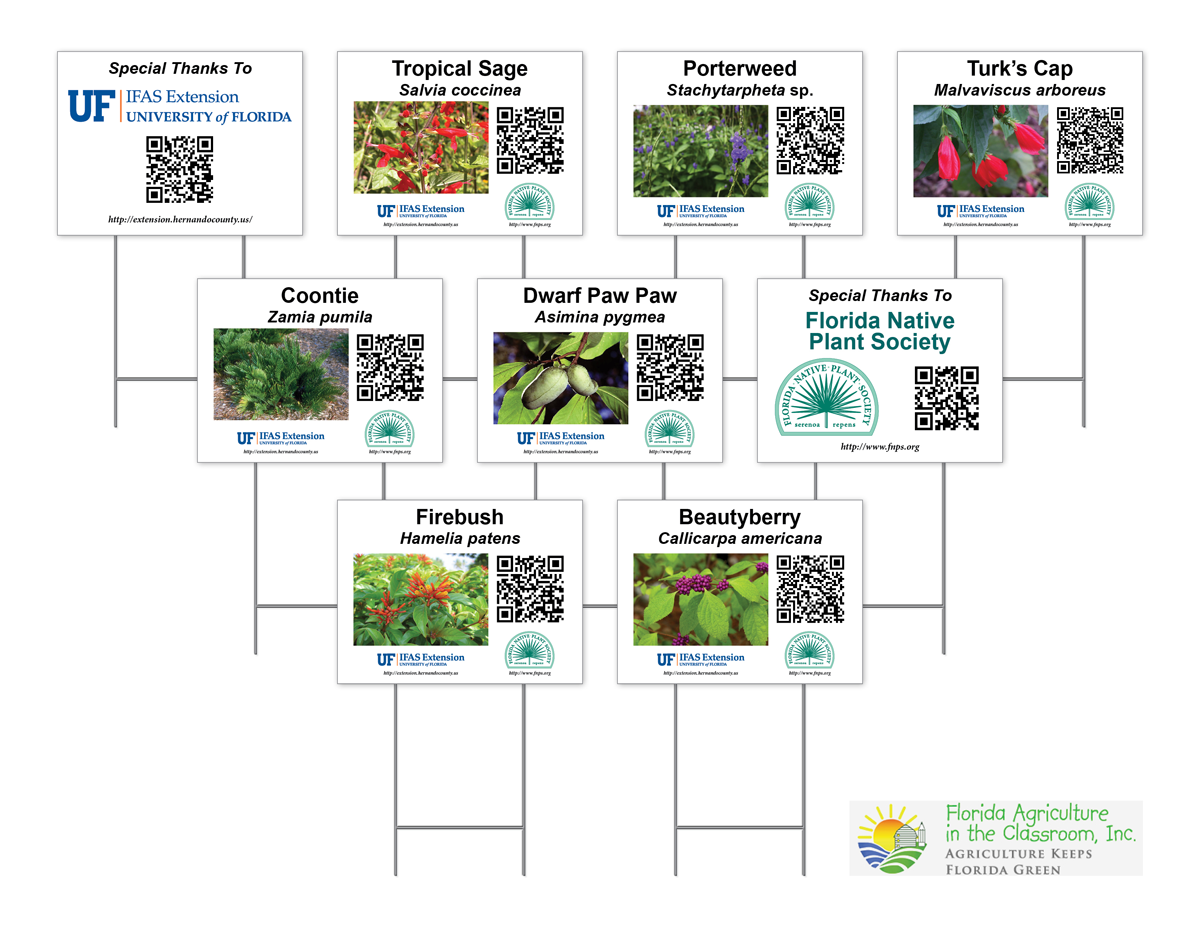 QR Code Signage for UF/IFAS Extension, Florida Agriculture in the Classroom, Florida Native Plant Society Project