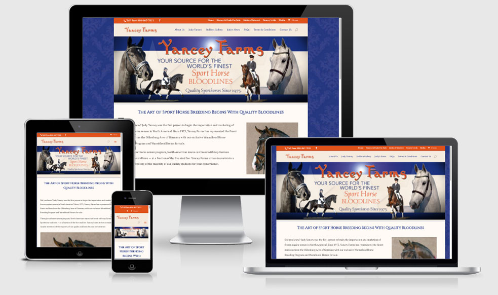 Equine Horse Website Design — Ocala, FL