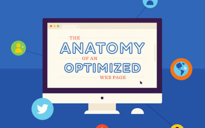 anatomy-optimized-web-page-infographic