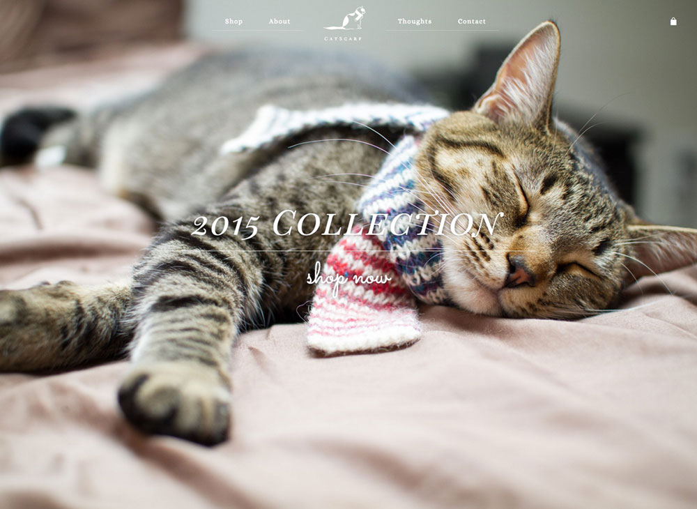 catscarf-hero-image-website
