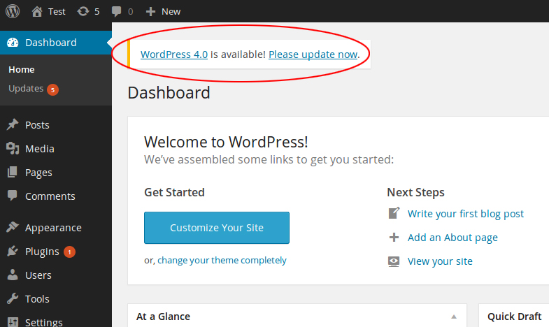 Updating your WordPress website