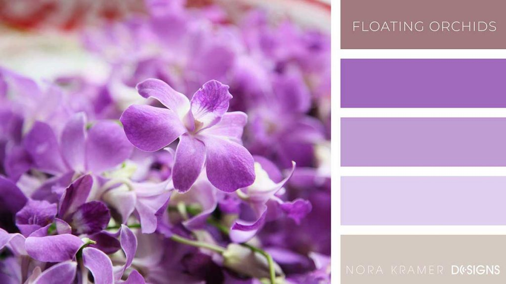 Floating Orchids Color Palette