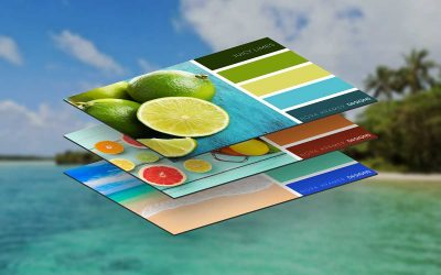 8 Beautiful Color Palettes for Your Next Web Project