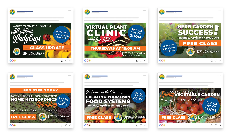 Hernando Extension Facebook Events - Graphic Design